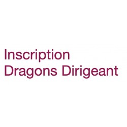 Inscription Dirigeant Dragons